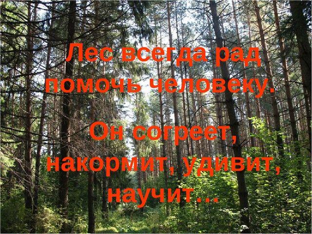 Лес всегда рад помочь человеку. Он согреет, накормит, удивит, научит…