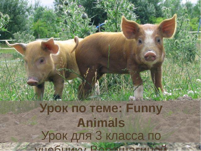 """Урок по теме: Funny Animals Урок для 3 класса по учебнику Верещагиной """"Englis..."""