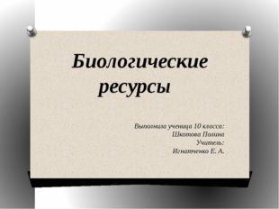 Биологические ресурсы Выполнила ученица 10 класса: Шкотова Полина Учитель: Иг