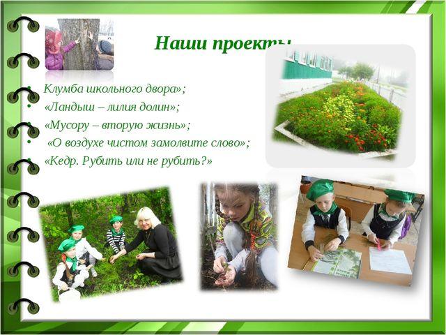 Наши проекты Клумба школьного двора»; «Ландыш – лилия долин»; «Мусору – втору...