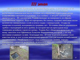 III этап На окраине села Ярославка, на правом берегу реки, в 12-ти метрах о