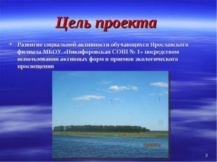 Цель проекта Развитие социальной активности обучающихся Ярославского филиала