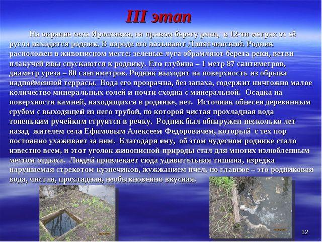III этап На окраине села Ярославка, на правом берегу реки, в 12-ти метрах о...