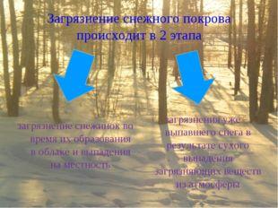 Загрязнение снежного покрова происходит в 2 этапа загрязнение снежинок во вре