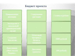 Бюджет проекта Направление расходов Содержание расходов Сумма в рублях Экску