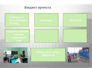 Бюджет проекта Районные и республиканские НПК транспорт 300 рублей Оказание