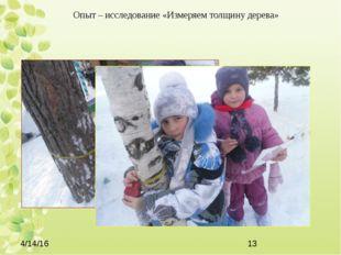 Опыт – исследование «Измеряем толщину дерева»