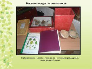 Выставка продуктов деятельности Гербарий, книжка – малютка «Узнай дерево», ра