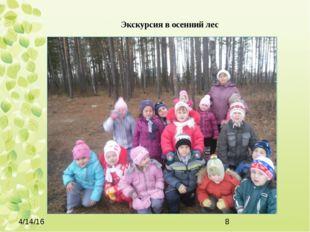 Экскурсия в осенний лес