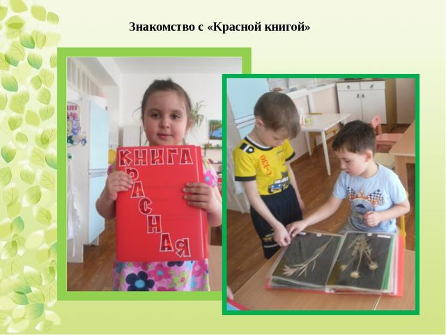 Знакомство с «Красной книгой»