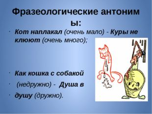 Фразеологическиеантонимы: Кот наплакал(очень мало) -Куры не клюют(очень м