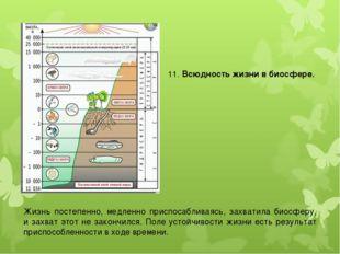 11. Всюдность жизни в биосфере. Жизнь постепенно, медленно приспосабливаясь,