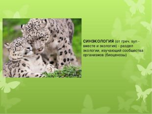 СИНЭКОЛОГИЯ(от греч. syn - вместе и экология) - раздел экологии,изучающий с