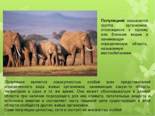 Популяцией называется группа организмов, относящихся к одному или близким вид