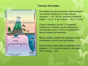 Биосфера распространена неравномерно по земной поверхности, верхняя ее границ