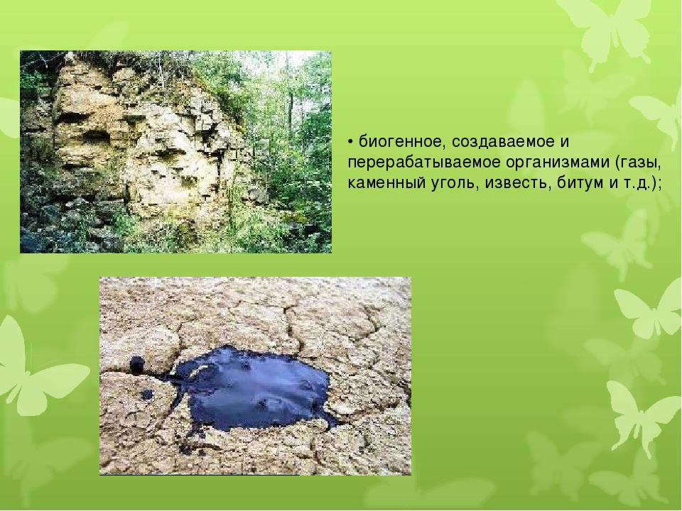 • биогенное, создаваемое и перерабатываемое организмами (газы, каменный уголь...