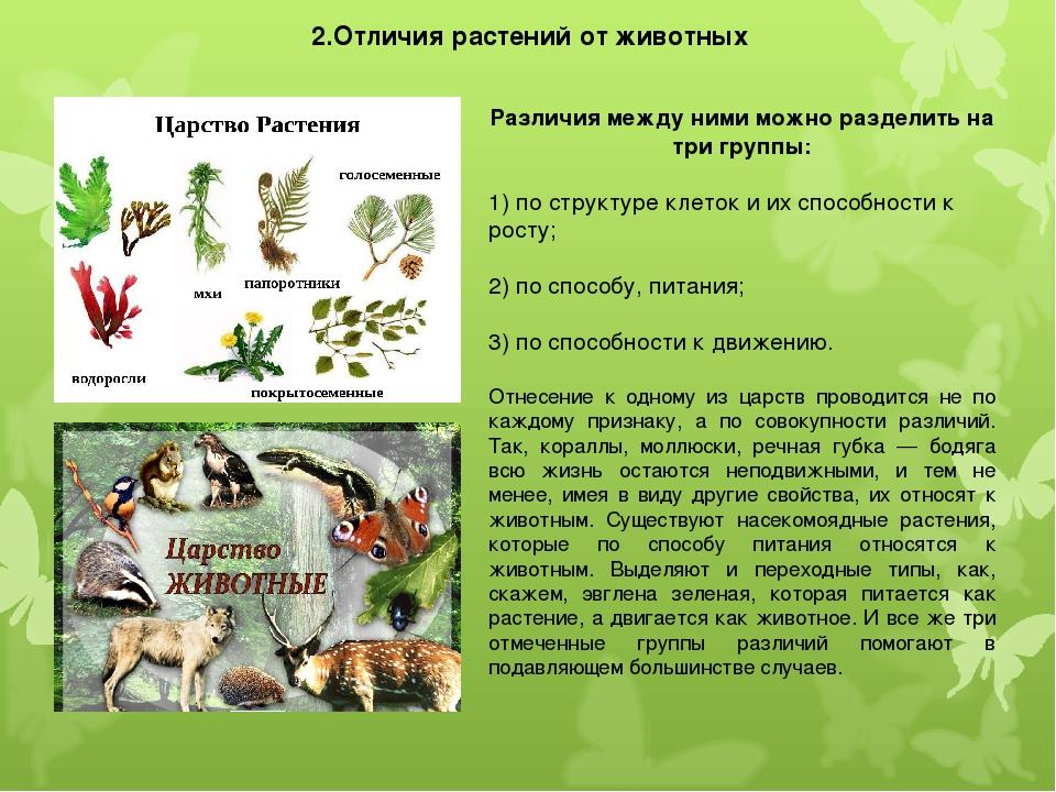 2.Отличия растений от животных Различия между ними можно разделить на три гру...