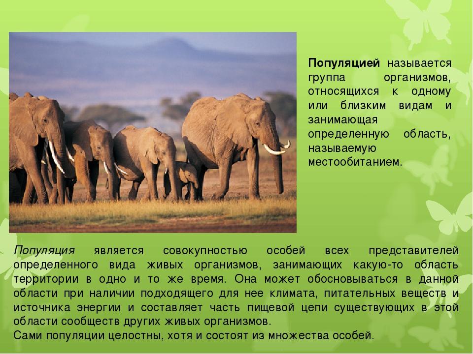 Популяцией называется группа организмов, относящихся к одному или близким вид...