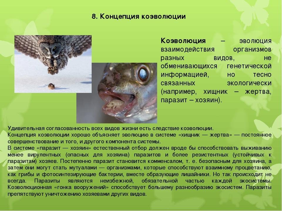 8. Концепция коэволюции Коэволюция – эволюция взаимодействия организмов разны...