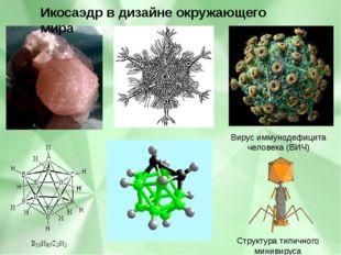 Структура типичного минивируса бактериофага Вирус иммунодефицита человека (В