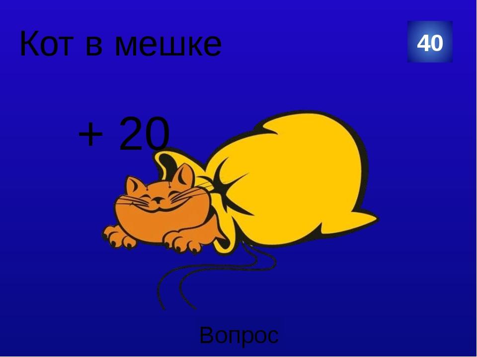30 + 20 Вопрос Кот в мешке