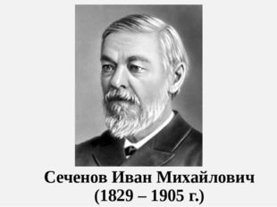 Сеченов Иван Михайлович (1829 – 1905 г.)