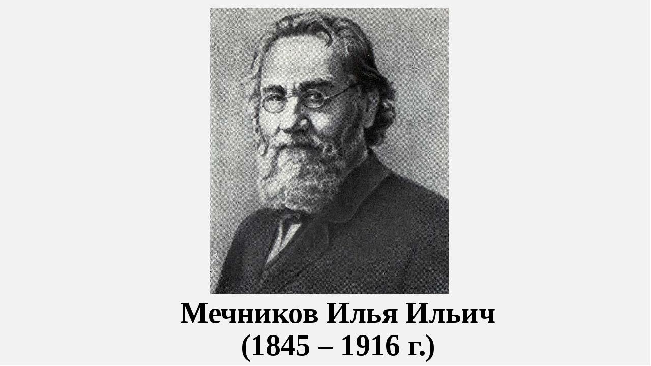 Мечников Илья Ильич (1845 – 1916 г.)