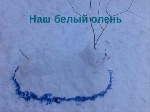 Наш белый олень