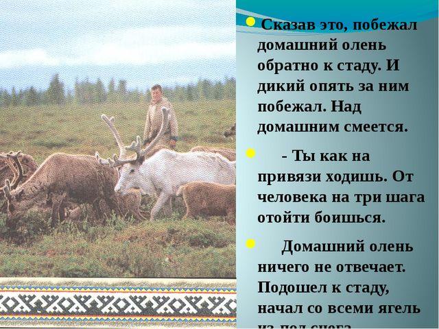 Сказав это, побежал домашний олень обратно к стаду. И дикий опять за ним поб...