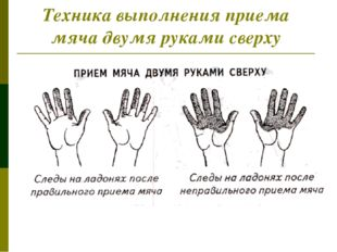 Техника выполнения приема мяча двумя руками сверху