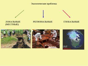 Экологические проблемы ЛОКАЛЬНЫЕ (МЕСТНЫЕ) РЕГИОНАЛЬНЫЕ ГЛОБАЛЬНЫЕ
