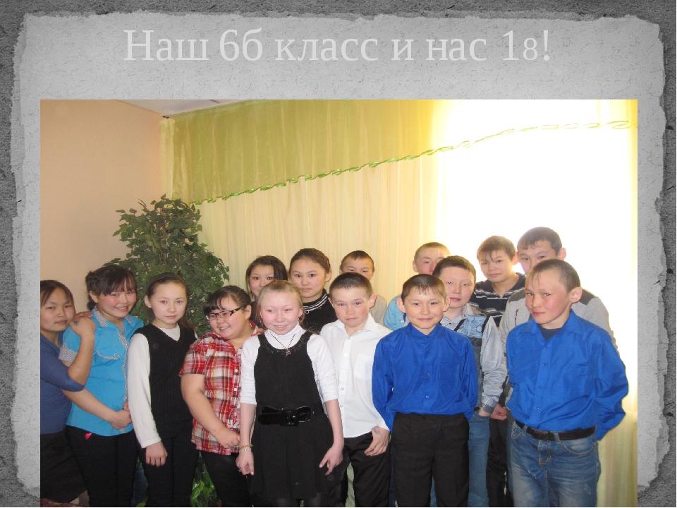 Наш 6б класс и нас 18!
