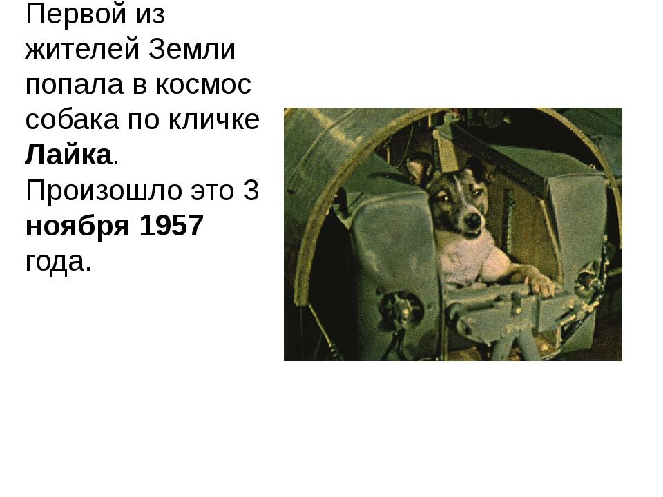 Первой из жителей Земли попала в космос собака по кличке Лайка. Произошло это...