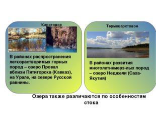 Низинные болота встречаются там, где близко к поверхности подходят грунтовые