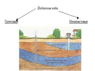 Механический состав почв Глинистые, суглинистые (тяжёлые); плохо пропускают в