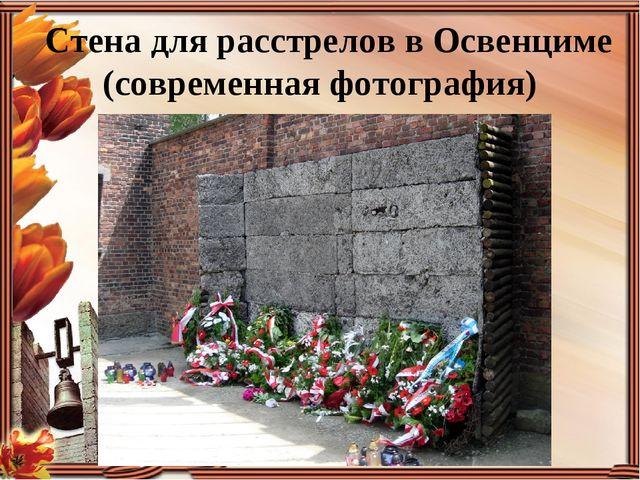 Стена для расстрелов в Освенциме (современная фотография)