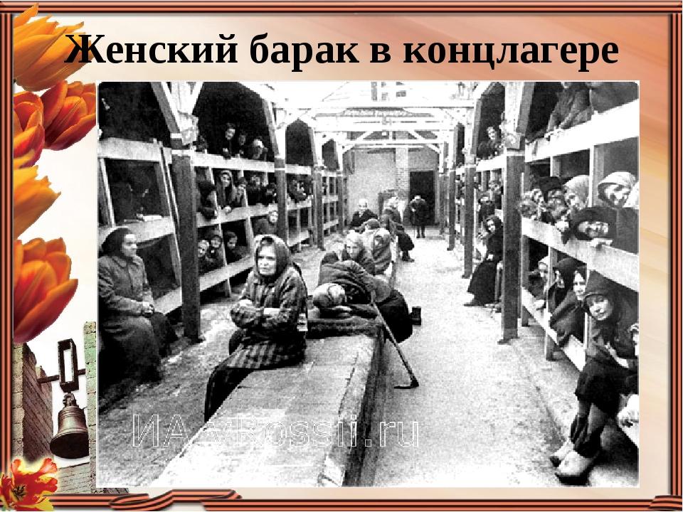 Женский барак в концлагере