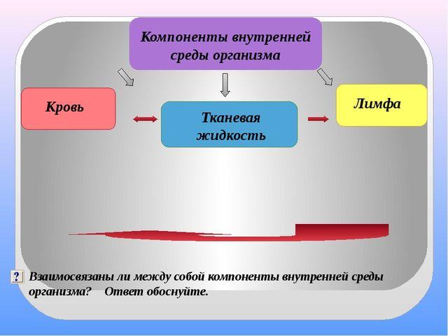 Компоненты внутренней среды организма Тканевая жидкость Кровь Лимфа Взаимосв...