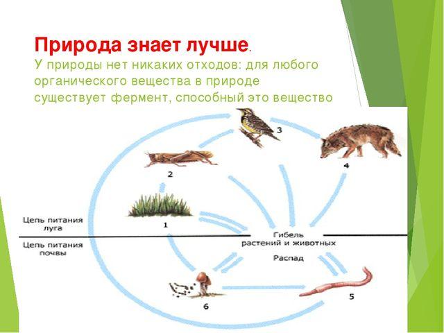 Природа знает лучше. У природы нет никаких отходов: для любого органического...