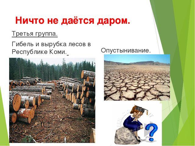 Ничто не даётся даром. Третья группа. Гибель и вырубка лесов в Республике Ком...