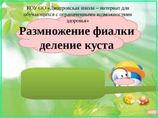 КОУ ОО «Дмитровская школа – интернат для обучающихся с ограниченными возможно