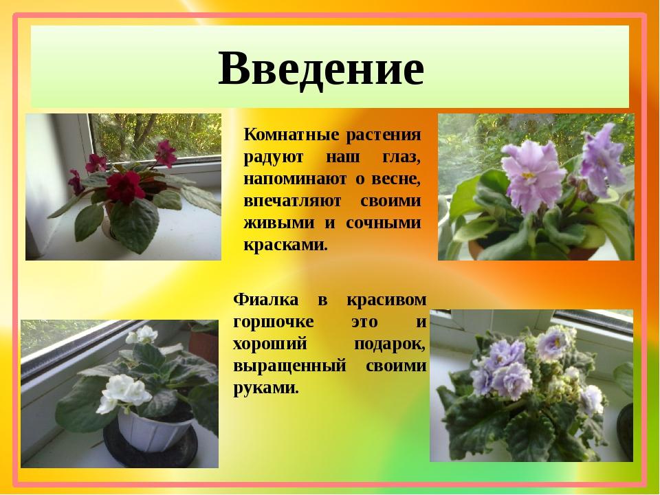 Введение Комнатные растения радуют наш глаз, напоминают о весне, впечатляют с...