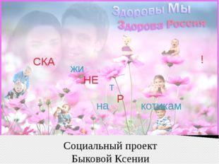 Социальный проект Быковой Ксении СКА жи НЕ т на котикам Р !