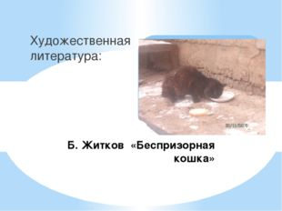 Б. Житков «Беспризорная кошка» Художественная литература: