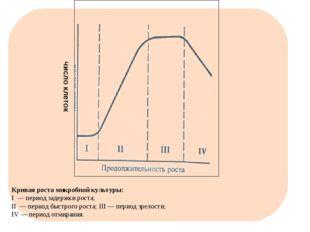 Кривая роста микробной культуры: I — период задержки роста; II — период бы