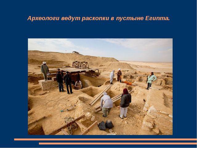 Археологи ведут раскопки в пустыне Египта.