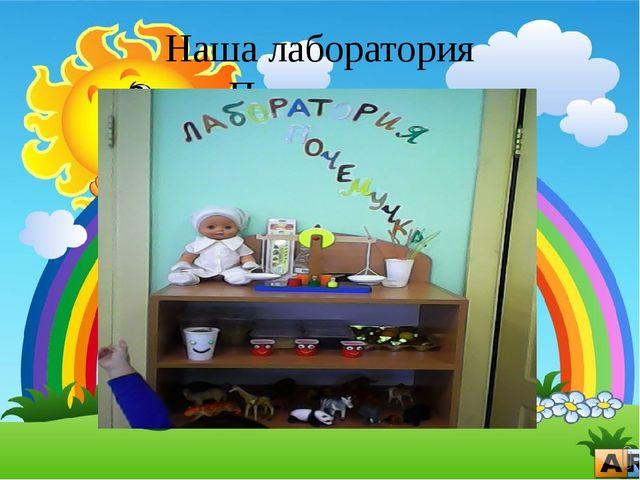 Наша лаборатория «Почемучка»