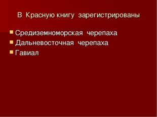 В Красную книгу зарегистрированы Средиземноморская черепаха Дальневосточная ч