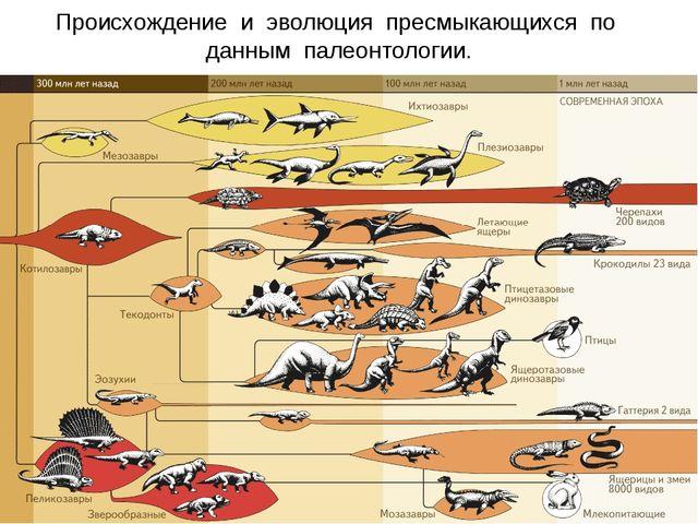 Происхождение и эволюция пресмыкающихся по данным палеонтологии.