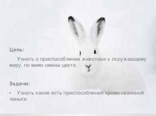 Цель: Узнать о приспособлении животных к окружающему миру, по мимо смены цв